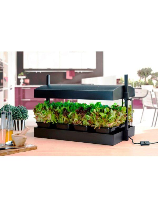 SunBlaster Growlight Garden - Black - with LED Lighting