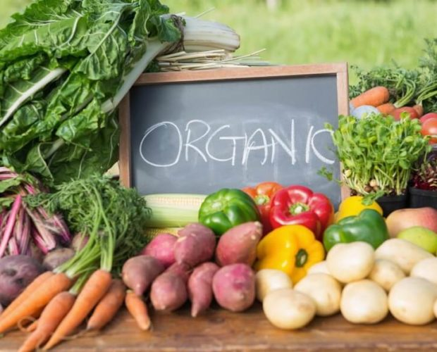 The Importance of Growing Organic Produce