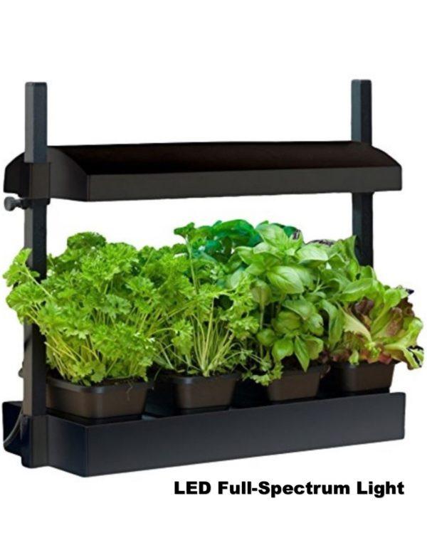 SunBlaster Micro Growlight Garden – LED Lighting – Black