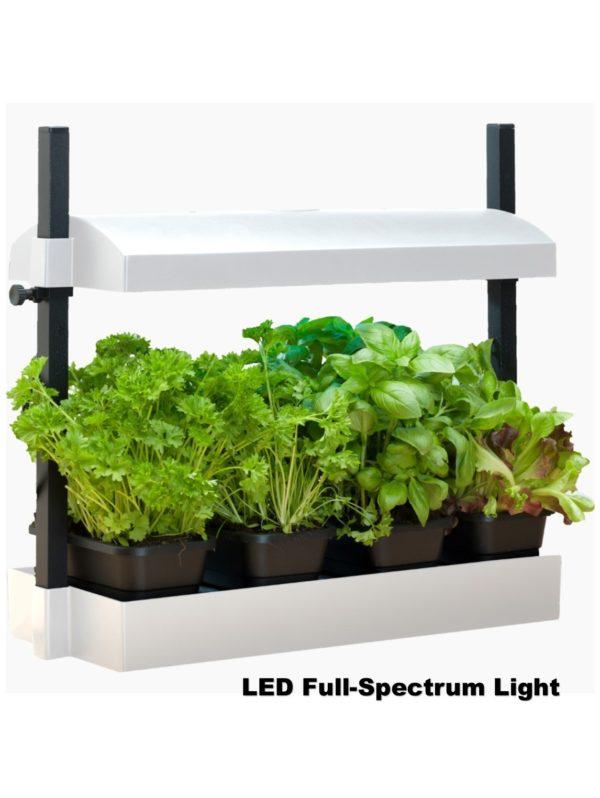 SunBlaster Micro Growlight Garden – with LED Lighting – White