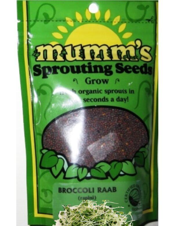 Mumm's Broccoli Raab (Rapini)_Seeds