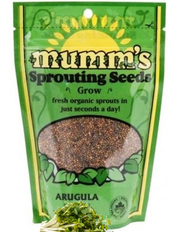Organic Arugula Sprouting Seeds