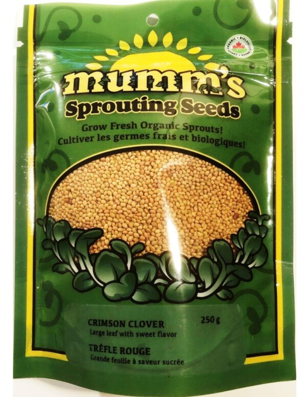 Organic Crimson-Clover Sprouting Seeds